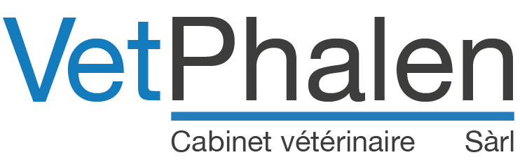 Dr Méd Vét Alexandra Durrer - Cabinet Vétérinaire à Vevey - Chiens - Chats - NAC - Félins